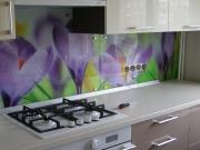 Кухонные стеклопанели